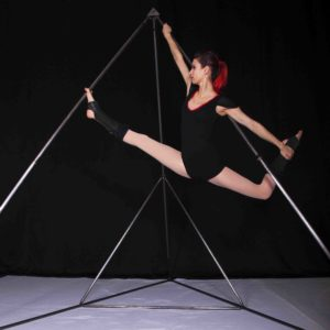 A Line In The Air Circus Performer Perth Australia Lyra Silks Tetra artist
