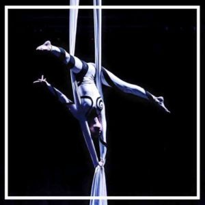 A Line In The Air Circus Performer Perth Australia Silks artist